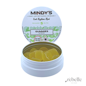 Keylime Kiwi Gummies | 20 pk | Mindys