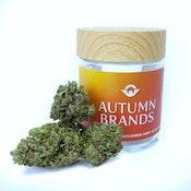 Mandarin Glue - 3.5g - Autumn Brands