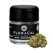 FloraCal Farms Jet Fuel Gelato #4 3.5G Flower