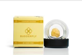 Budderfly Berry Blue 1g Live Resin Badder (THC 79.51%)
