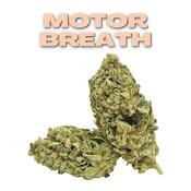 GT Motor Breath 8th