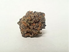 3.5g Black Truffle