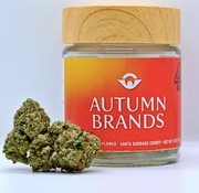 Autumn Brands Sundae Strudel EIGHTH 23%